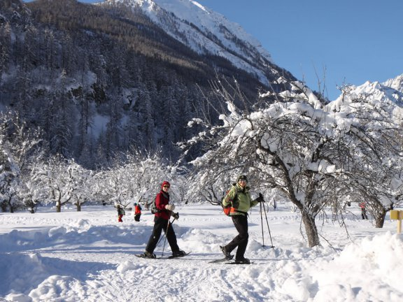 Snowshoeing at Vallouise in the Southern French Alps